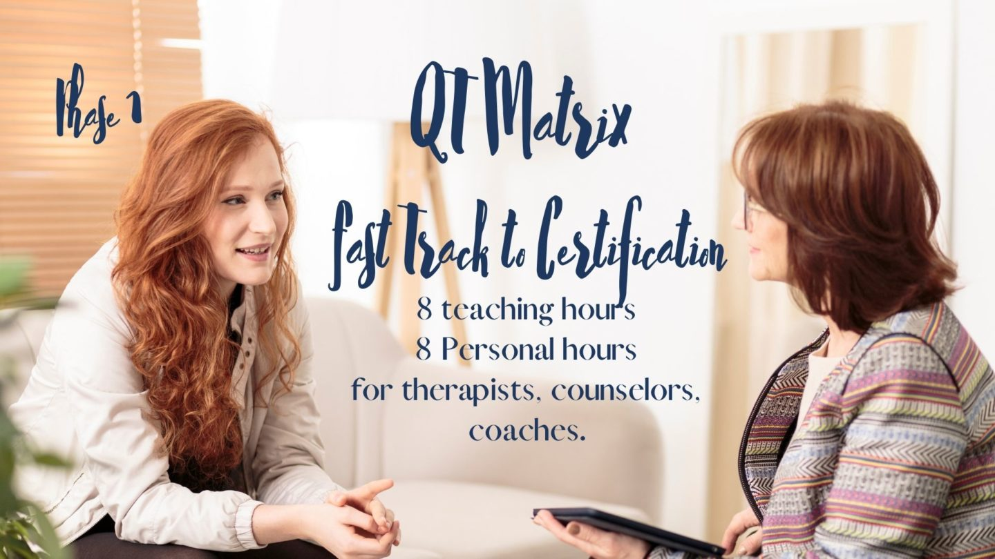 Fast track training for therapists